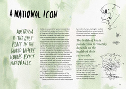 koala-land-report-nov2014-page-014