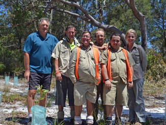 Joint Mission Helps Rescue Island Koalas