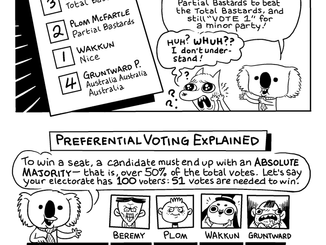 Dennis The Election Koala Explains How To Vote In The Australian Federal Election