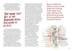 koala-land-report-nov2014-page-018