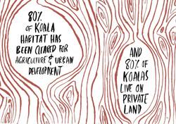 koala-land-report-nov2014-page-017