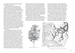 koala-land-report-nov2014-page-009