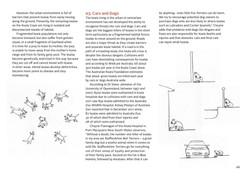 koala-land-report-nov2014-page-026