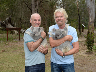 Sir Richard Branson Is Creating A Koala Haven At Noosa