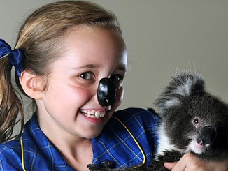 Adelaide Koala And Wildlife Hospital Official Opening At Plympton