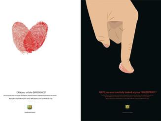 New Posters For The Australian Koala Foundation