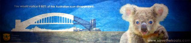 koala and sydney harbour bridge