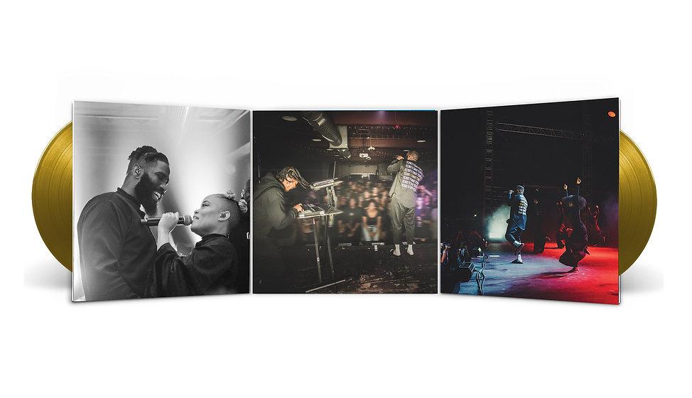 vinyl_trifold2.jpg