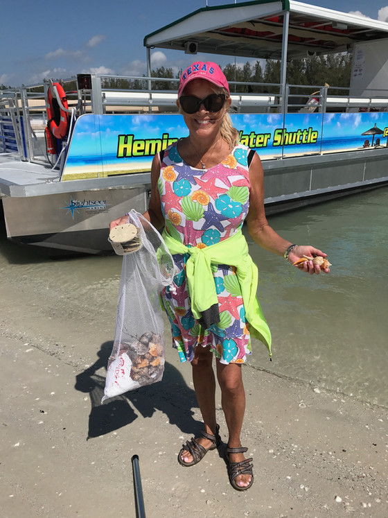 Best Beaches for Shelling in Marco Island Florida