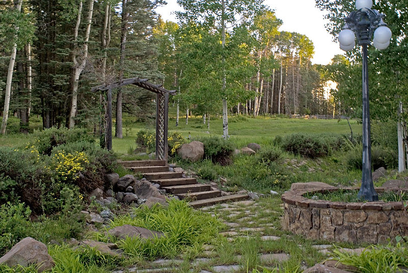 steps to yard and woods