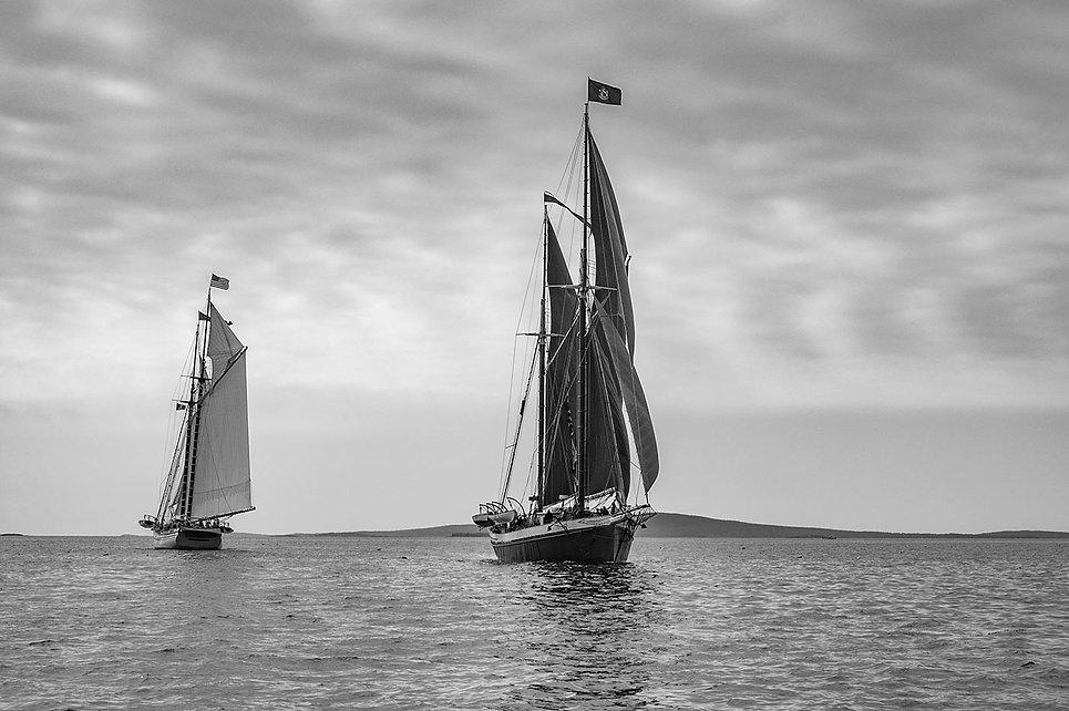danphotoboats.jpg