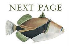nextpage.jpg