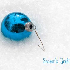 Bulb in Fresh Snow