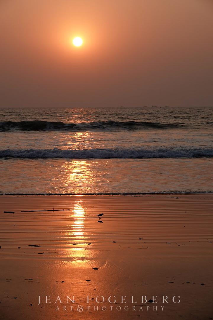 sunsetsea.jpg