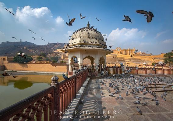 Amber Fort & Palace, Jaipur