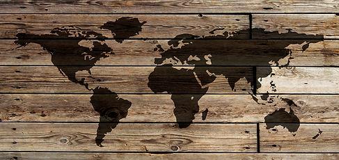 Woodgrain World maps framed
