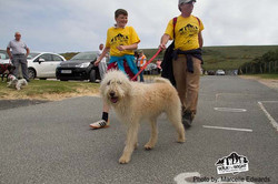 walk the wight 2015 silver aniversary 574 copy