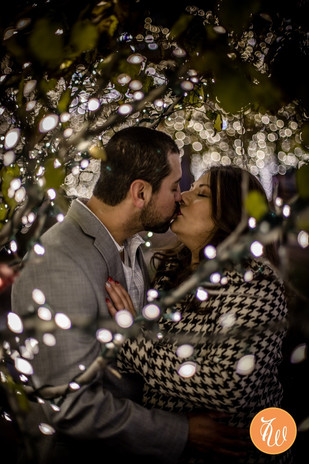Engaged couple kissing between branches wrapped in lights