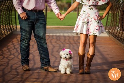 Engaged couple holding hands with dog sitting between them
