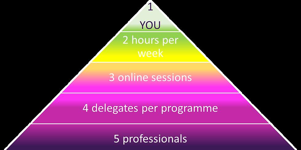 54321 Stress Support Programme