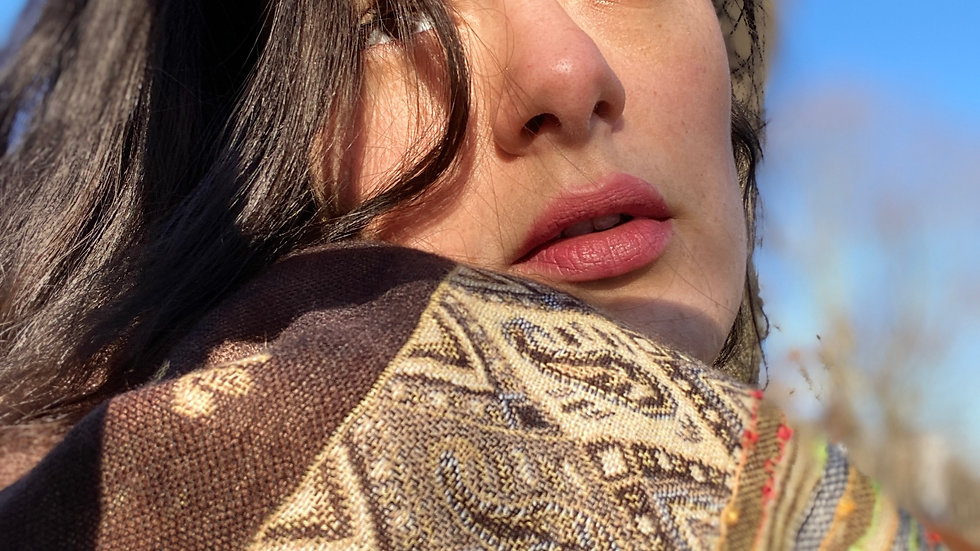 Brown Stripe Paisley Shawl