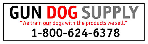 GDS Printable Logo.jpg