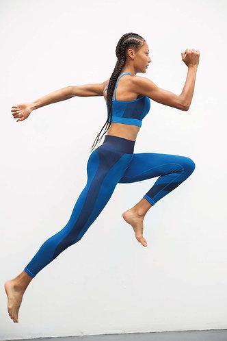 Women Seamless Sports Bra & Legging