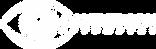 Sanderson Logo - White - Transparent.PNG