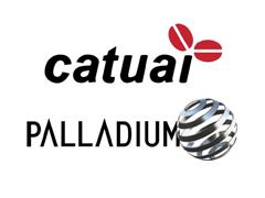 07 Catuai palladium.png