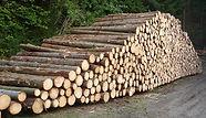 Industrieholz.jpg