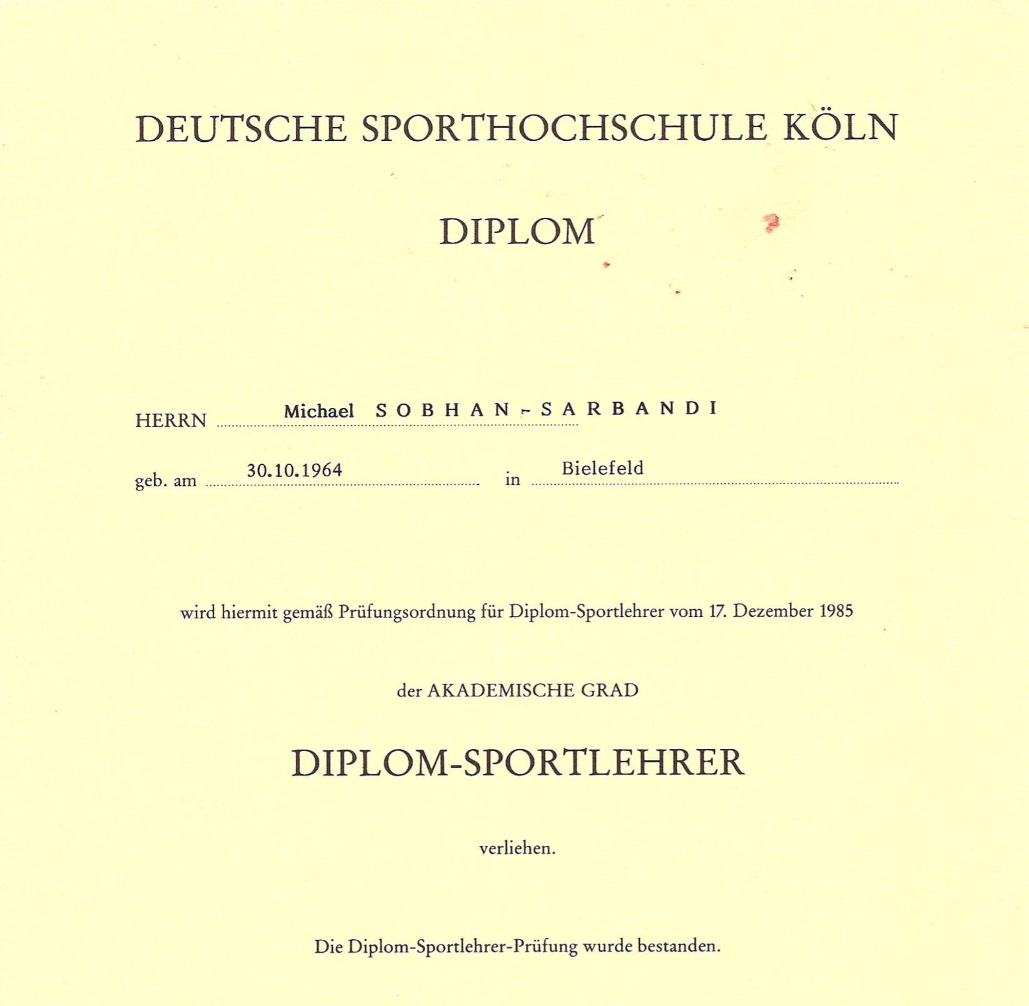 SpoHo_Diplom