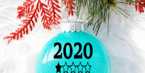 2020 Not Recommended Ornament