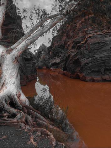 Nature's Gorge