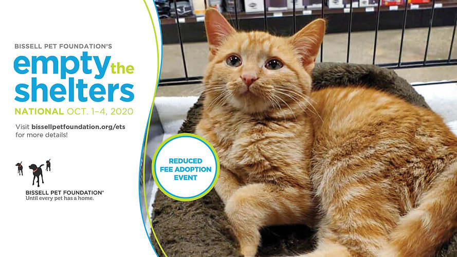2020-ETS-Oct-National-Cover-Photo-Cat-Re