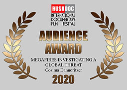 Audience Award RushDoc Fest 2020.001.jpe