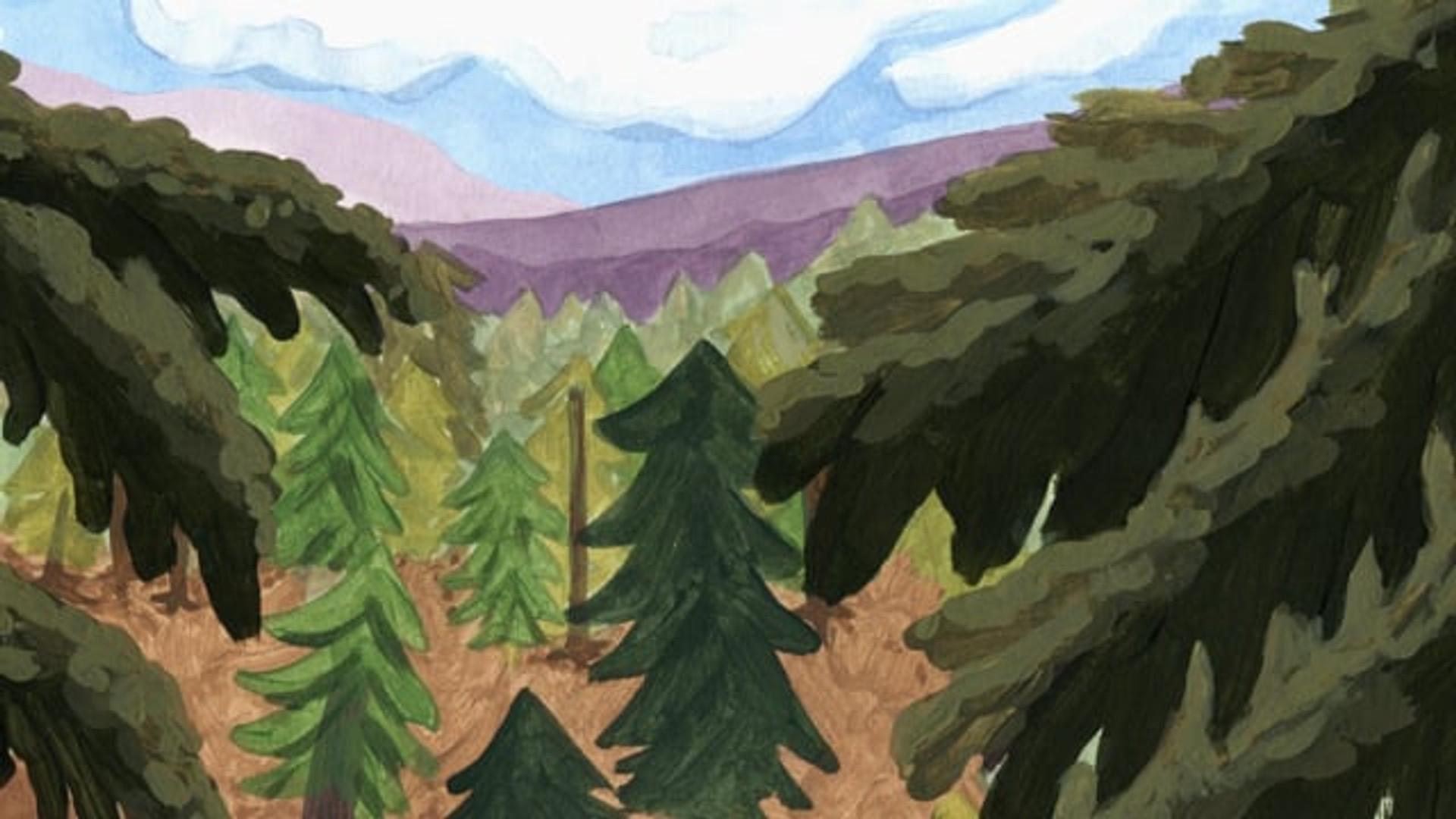 Montagne (Trailer)