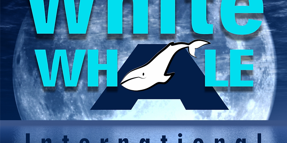 The 3rd Edition of the Family&Social White Whale Film Festival