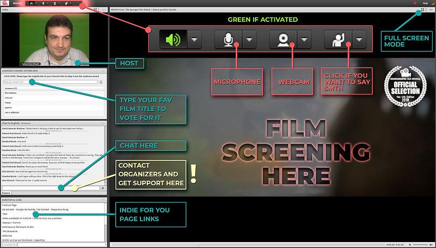 Filmmaker Screenings format