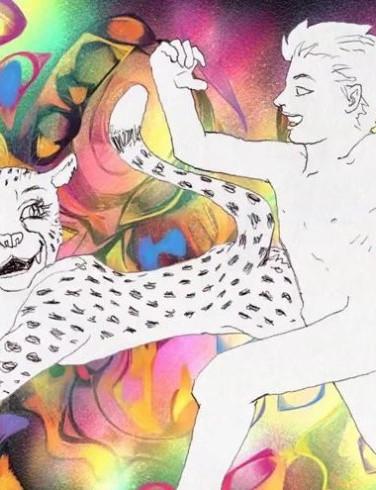 Lions & Cheetahs