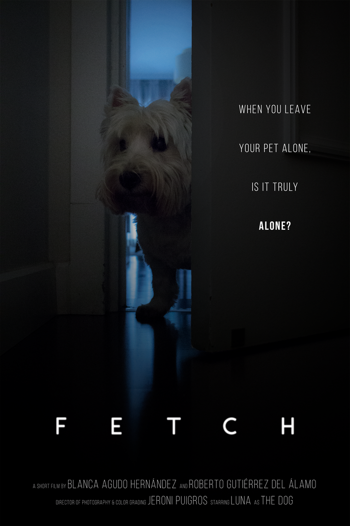 Fetch poster.png