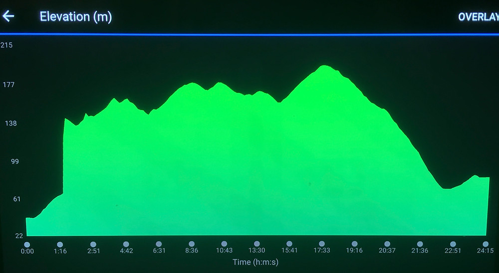 elevation from Bickleight to Tiverton