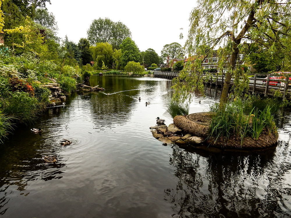 Walkington Duck Pond
