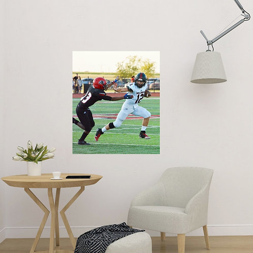 sports pic stix alternative to wall art canvas