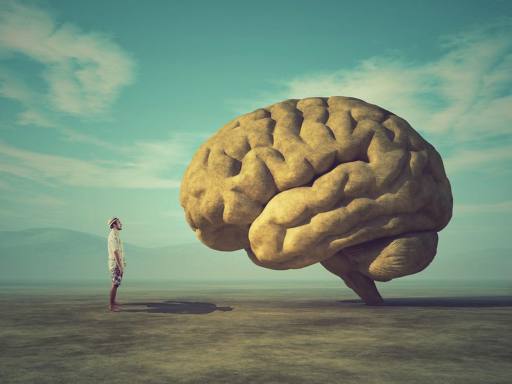 man looking at a big brain