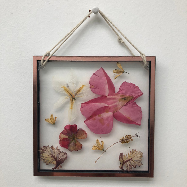 Preserved Flower Wall Art