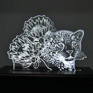 Interchangable LED Lamp