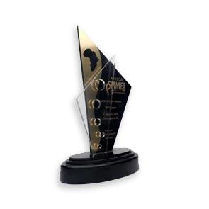 Cross SMME award.jpg