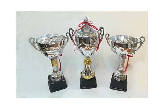 Silver Med Cups.jpg