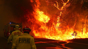 As Australia burns...
