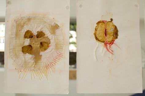 Vues de 2 pages du Journal de Traces. Les matériaux utilisés sont : pétales, thé, papier, colle, fils colorés, pelures de pamplemousses.